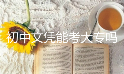 初中文凭能考大专吗