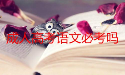 成人高考语文必考吗