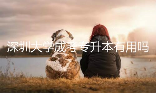 深圳大学成考专升本有用吗