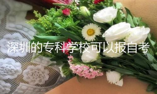 深圳专科报自考