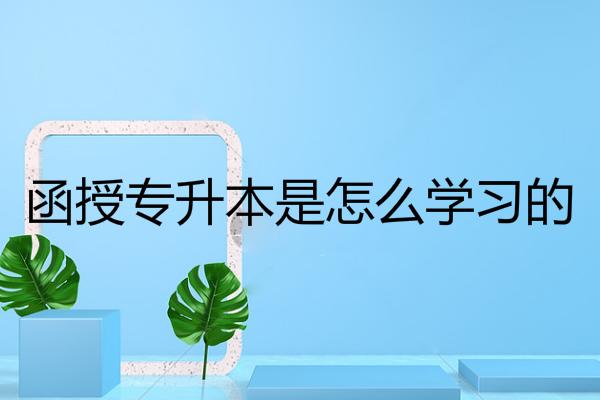 深圳成考函授专升本是怎么学习的?