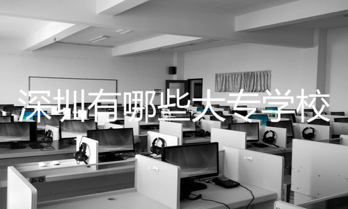 深圳有哪些大专学校