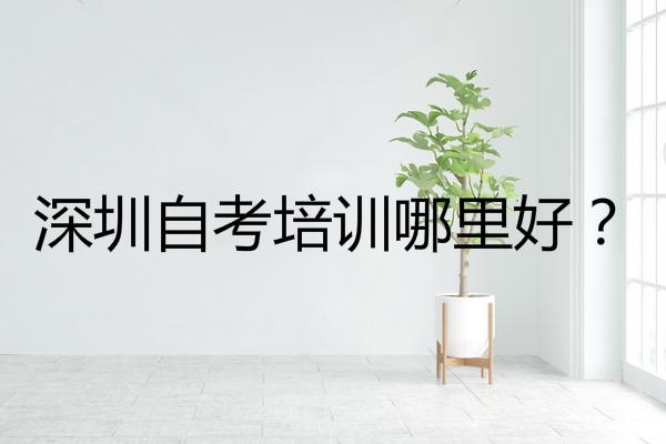 深圳自考培训