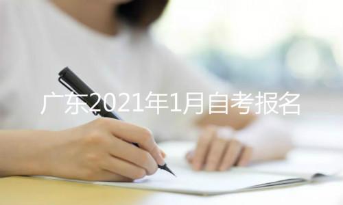 广东2021年1月自考报名