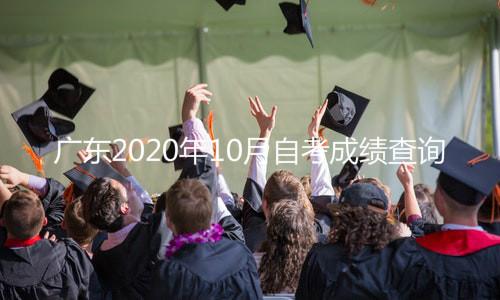 广东2020年10月自考成绩查询