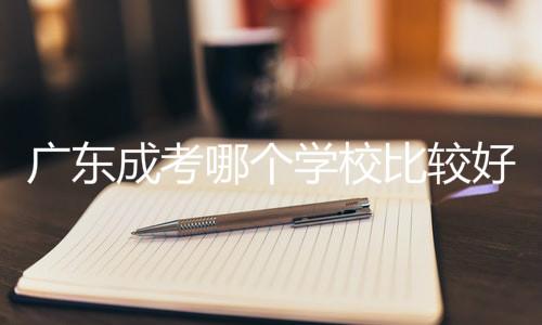 广东成考哪个学校比较好