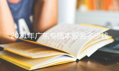 2021年广东专插本报名多少钱