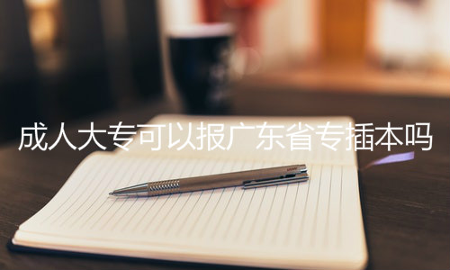 成人大专可以报广东省专插本吗